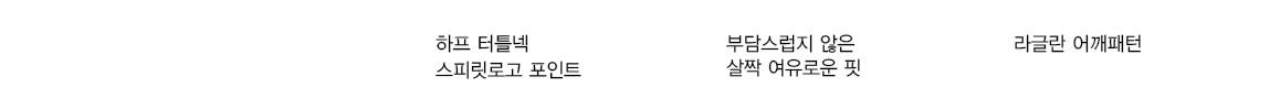 데상트(DESCENTE) 남성 트레이닝 터틀넥 롱슬리브 베이스 레이어 (기본 볼륨형 로고) (S9121TCO11)